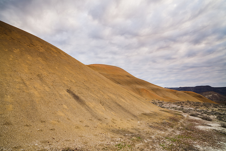 Mottled white and blue clouds are seen above a yellowish-gold hill in the Painted Hills section of the John Day Fossil Bed National Monument.