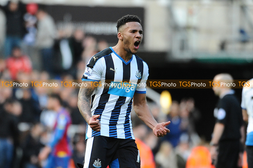 Jamaal Lascelles of Newcastle United celebrates at the final whistle during Newcastle United vs Crystal Palace, Barclays Premier League Football at St. James' Park on 30th April 2016