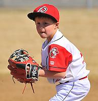Saline County Sports 7's - 2016