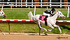 Aim Hi winning at Delaware Park racetrack on 7/10/14
