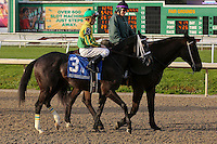 January 17, 2015: Divine Dawn (KY) with Kerwin D Clark in the Silverbulletday Stakes at the New Orleans Fairgrounds course. Steve Dalmado/ESW/CSM
