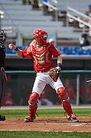Auburn Doubledays catcher Erik VanMeetren (13) during a game against the Batavia Muckdogs on September 7, 2015 at Falcon Park in Auburn, New York.  Auburn defeated Batavia 11-10 in ten innings.  (Mike Janes/Four Seam Images)