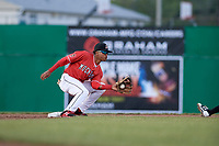 Batavia Muckdogs second baseman Gerardo Nunez (1) receives a throw from the catcher on a stolen base attempt during a game against the West Virginia Black Bears on June 19, 2018 at Dwyer Stadium in Batavia, New York.  West Virginia defeated Batavia 7-6.  (Mike Janes/Four Seam Images)