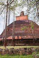 Sacred City of Anuradhapura, ruins of Jetvanarama Dagoba, aka Jetvanaramaya Stupa, Cultural Triangle, Sri Lanka, Asia. This is a photo of ruins at Jetvanarama Dagoba, aka Jetvanarama Stupa in the Sacred City of Anuradhapura, a complex of ancient Buddhist temple ruins.