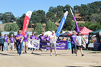 Mariposa Relay for Life 2013