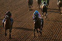 ARCADIA, CA - MARCH 11: Shaman Ghost #3, ridden by Javier Castellano defeats Midnight Storm #1, ridden by Rafael Bejarano to win the Santa Anita Handicap at Santa Anita Park on March 11, 2017 in Arcadia, California. (Photo by Alex Evers/Eclipse Sportswire/Getty Images)