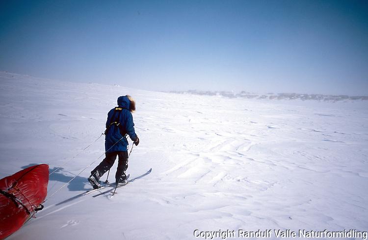 Mann med pulk går mot bosetningen Gjoa Haven i arktisk Canada. ---- Man pulling sled approaching the settlement of Gjoa Haven, Nunavut, Canada.