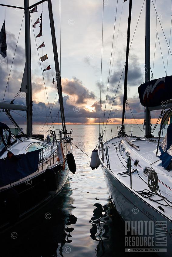 Cruising yachts at sunrise