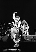Feb 11, 1977: JETHRO TULL - Odeon Hammersmith London