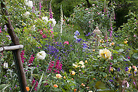 Country cottage mixed garden with roses, biennials (foxglove) and perennials gladiolas, Fickle Hill Old Rose Nursery California
