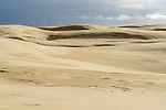 Stockton Beach Sand dunes Worimi Conservation Lands. Anna Bay, Port Stephens, NSW, Australia