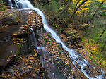 Ricketts Glen State Park, PA: Ganoga Falls on Kitchen Creek in autumn