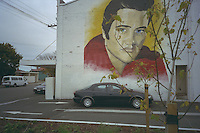 Elvis mural, Graceland, Christchurch.