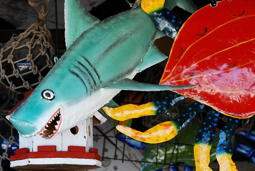 Jaws Preserved - Long Island Beach