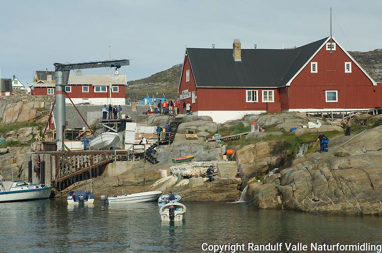 Ilimanaq i Diskobukten på Grønland ---- Ilimanaq in Disko Bay Greenland