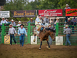 Bareback bronc riding at the rodeo, Saturday at the 80th Amador County Fair, Plymouth, Calif.<br /> .<br /> .<br /> .<br /> .<br /> #AmadorCountyFair, #1SmallCountyFair, #PlymouthCalifornia, #TourAmador, #VisitAmador