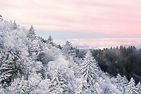 """MOUNTAIN CALM"" -- Sunrise after a recent snow in Great Smoky Mountains National Park near Newfound Gap. The park is located on the border of North Carolina and Tennessee in the southern Appalachian mountains."