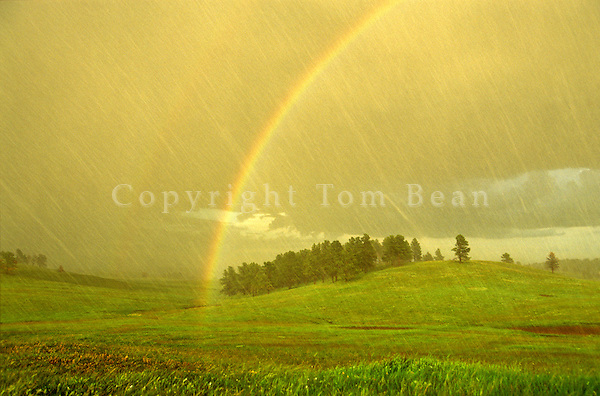 Rainbow Forms during hail and rainstorm at Wind Cave National Park in the Black Hills of South Dakota, AGPix_0361.