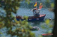 Europe/France/Bretagne/29/Finistère/Env de Pont-Aven: Port de Kerdruc sur l'Aven