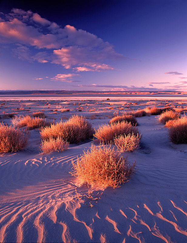 M00173M.tiff   Sand dunes in Malheur National Wildlife Refuge with Harney lake. Oregon