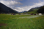 Cattle sheds in meadow, Imst district, Tyrol/Tirol, Austria, Alps.