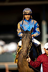 OCT 05: Maxfield with Jose Ortiz wins the <br /> Breeders Futurity Stakes at Keeneland Racecourse, Kentucky on October 05, 2019. Evers/Eclipse Sportswire/CSM