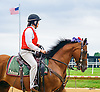 Outrider at Delaware Park on 7/4/16