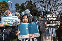 A woman wearing a toy dugong on her head at a rally to protest the construction of a new US military base at Henoko in Okinawa outside the Japanese National Diet building, Nagatacho, Tokyo, Japan Sunday January 25th 2015. Organisers say 7,000 people joined the protest and formed a human chain around the Assembly building.
