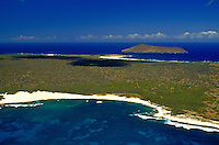 Aerial of island with beach and coastline, Niihau