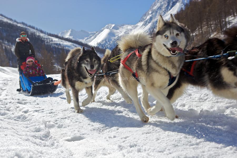 Balade en chiens de traineau entre la Roche écroulée et Ristolas, vallée d'Abries - Ristolas