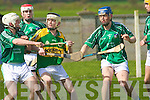 David Murphy and Kevin McDonnell(Limerick) and Sean Weir (Kerry) .