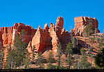 The Castle, Navajo Trail, Bryce Canyon National Park, Utah