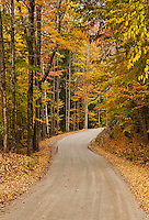 Unpaved country road in autumn, Vermont, VT, USA