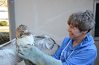 Courtesy photo/BO BLACK<br />