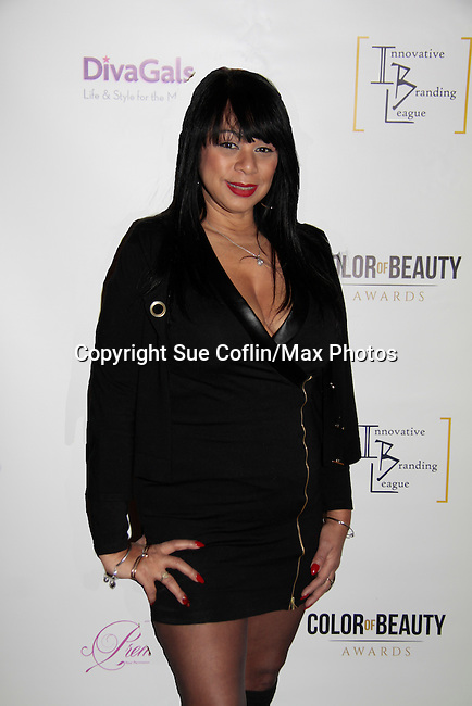 Millie Rivers at Color of Beauty Awards hosted by VH1's Gossip Table's Delaina Dixon and Maureen Tokeson-Martin on February 28, 2015 with red carpet, awards and cocktail reception at Ana Tzarev Gallery, New York City, New York.  (Photo by Sue Coflin/Max Photos)