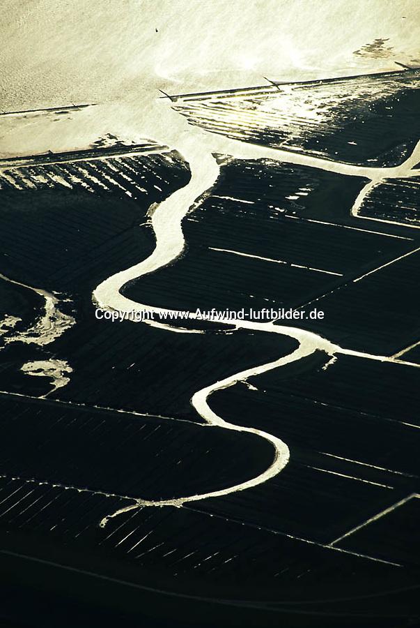 Deutschland, Schleswig- Holstein, Wattenmeer, Naturpark, Bach, Wasser, Buhne, Hochwasserschutz, Salzwiesen,