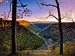 Pine Creek Gorge near Barbour Rock, Pennsylvania