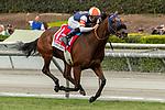 09-28-19 Rodeo Drive Stakes Santa Anita
