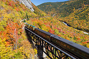 White Mountains Railroads