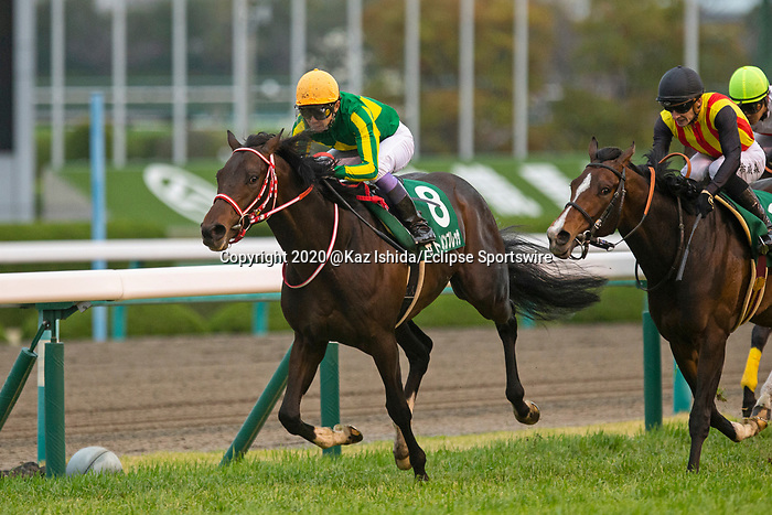 TAKARAZUKA,JAPAN-MAR 28: Satono Impresa #8,ridden by Yutaka Take,wins the Mainichi Hai at Hanshin Racecourse on March 28,2020 in Takarazuka,Hyogo,Japan. Kaz Ishida/Eclipse Sportswire/CSM