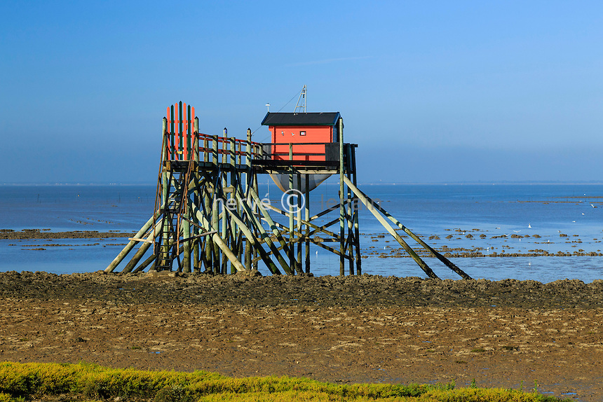 France, Charente-Maritime (17), Port-des-Barques, île Madame, carrelet à marée basse // France, Charente Maritime, Port des Barques, Madame island, shore operated lift net at low tide