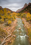 Utah, Southern, Zion National Park. The Virgin River and cliffs of Zion National Park  in autumn.