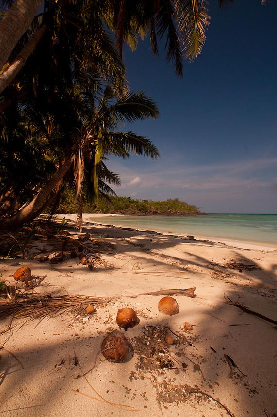Coconuts at Devil's Beach, Turtle Island, Yasawa Islands, Fiji