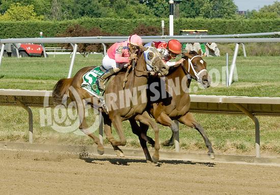 Blind Luck winning The Delaware Handicap (gr2) at Delaware Park on 7/16/11