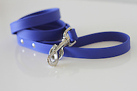 Legitimutt blue sunshower leash