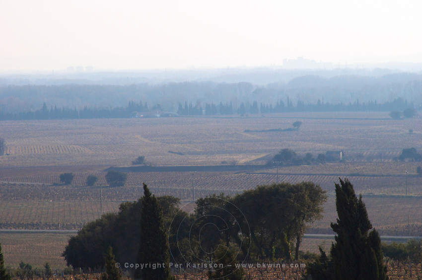 The view from Chateau des Fines Roches over the vineyards and to Avignon with the Papal Palace on the horizon, Chateauneuf-du-Pape, Vaucluse, Rhone, Provence, France