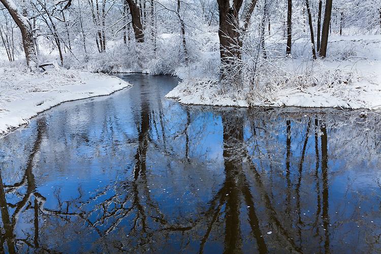 Winter morning light on a stream at The Morton Arboretum; Lisle, IL