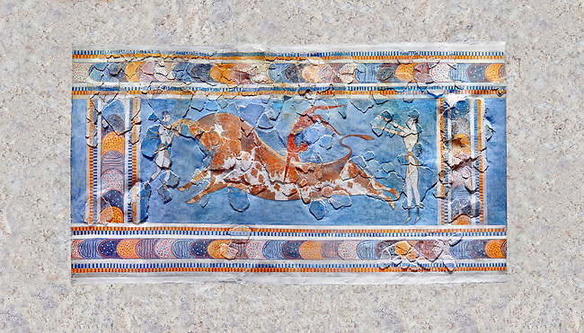 The Minoan 'Bull leaping' fresco depicting an athlete leaping over a bulls back,  Knossos-Palace, 1600-1400 BC . Heraklion Archaeological Museum.<br /> <br /> there are 3 participants, two white skinned women and one brown skinned man. One female athele is restraining the bull ny the horns to slow it down as the male athlete performs a backward summersault ober the bulls back. The second female athlete waits to catch the leaper.<br /> <br /> The fresco was found on the east side of the palace of Knossos together with fragments depicting different stages of bull leaping.