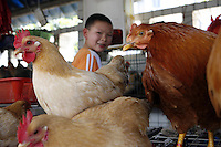 A young boy sits among the live chickens, waste and feces in the Futian agriculture and produce market.<br />