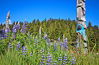 Totem Poles at the Haida Heritage Centre and Museum in Skidegate on Graham Island, Haida Gwaii, British Columbia, Canada.